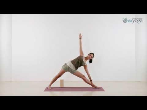 Айенгар-йога. Курс для начинающих