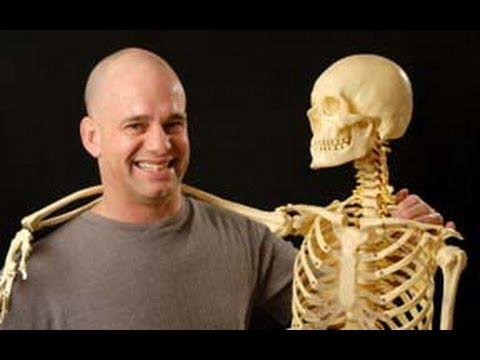 йога физиология