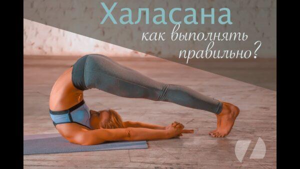 халасана поза йоги