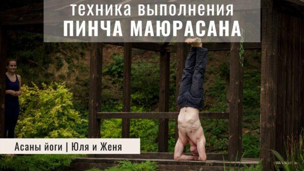 Пинча Маюрасана йога стойка