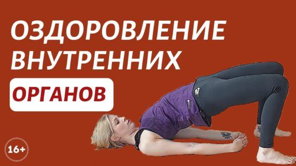 йога внутренние органы