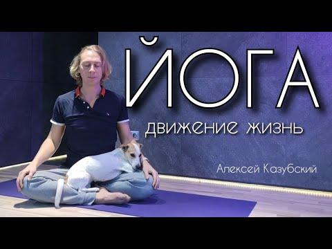йога начинающим